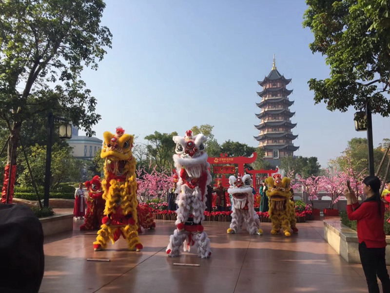深圳旅游区舞狮表演